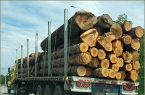 camion-bois-300x197