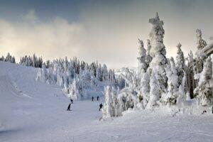 paysage-hiver-noel-300x200