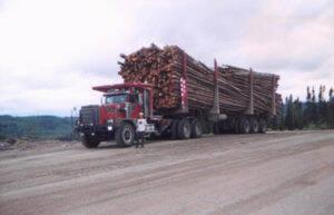 camionneurs-forestiers-300x193