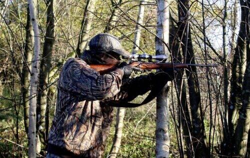 chasseur-arme-à-feu