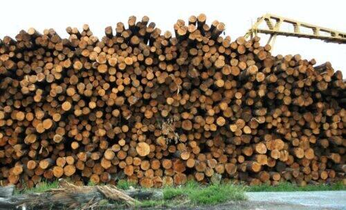 lumber-54572_1920-1024x622