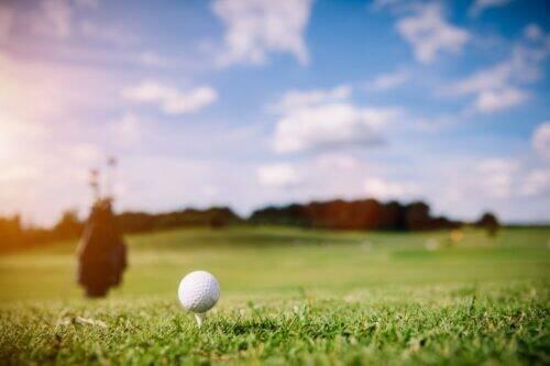 golf-1024x683