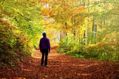 marche-randonnée-sentier-1024x683
