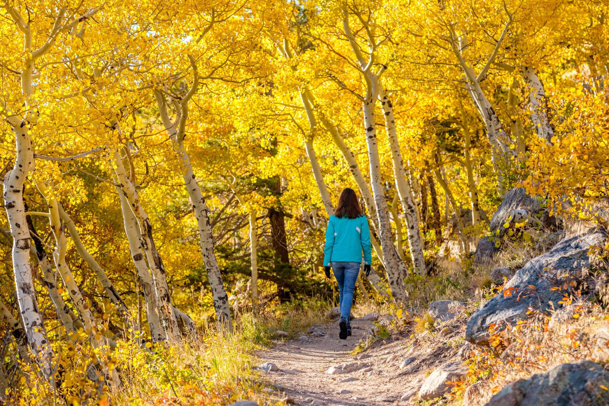 randonnée automne