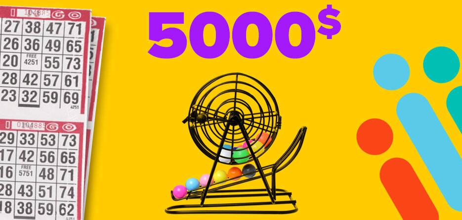 Bingo-5000-Mauve